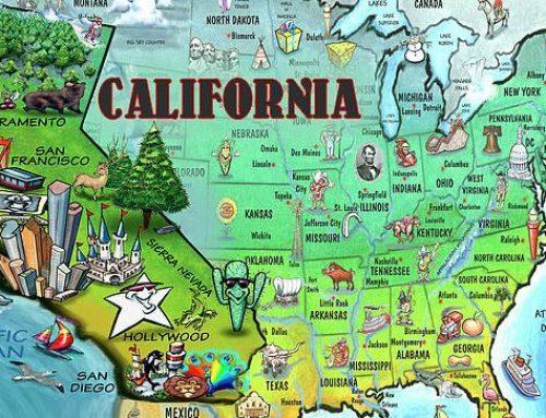 I più bei paesaggi naturali in California tra cielo, terra e mare!
